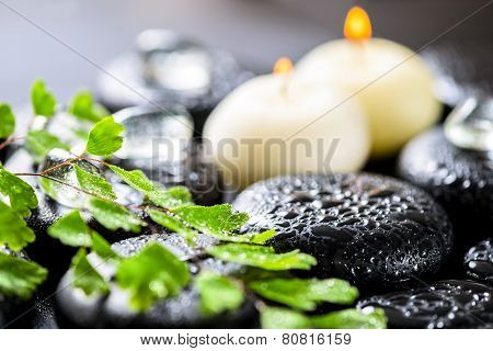 Beautiful Spa Background Of Green Twig Fern, Ice And Candles On Zen Basalt Stones With Dew, Closeup