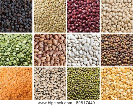 Collage Of Legumes