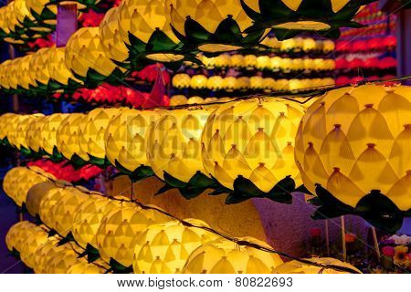 lotus lanterns at night