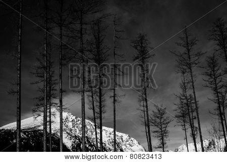 Fine art black and white mountain landscape