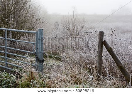 Winter Fenland