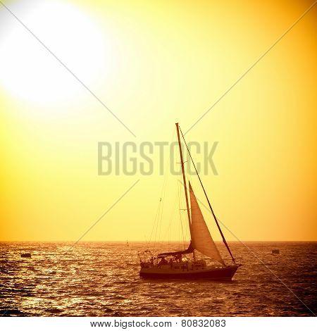 Sail Boat Against Sea Sunset
