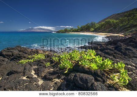 Little Beach in Makena State Park, south Maui, Hawaii, USA