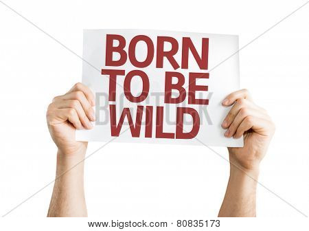 Born to be Wild card isolated on white background