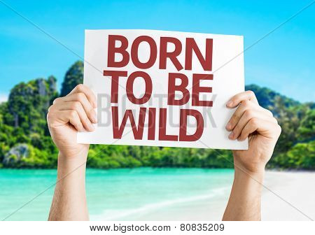 Born to be Wild card with a beach background