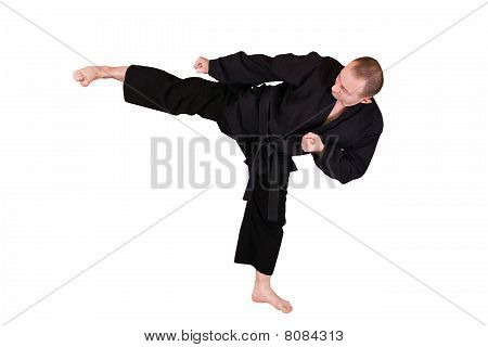 Martial Art Side Kick