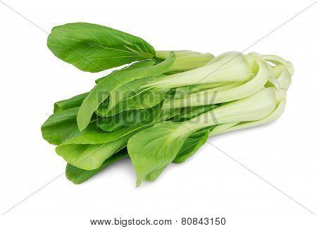 Cabbage Pak Choy