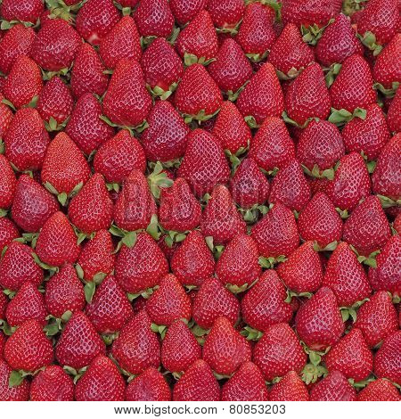 fresh strawberries, natural red background