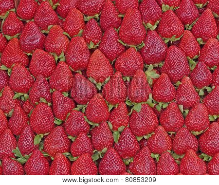 fresh strawberries at the local market