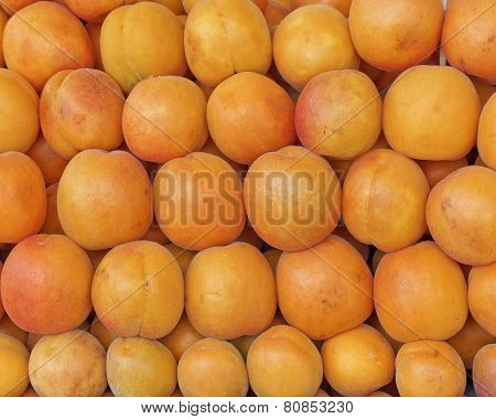 fresh organic apricots at the local market