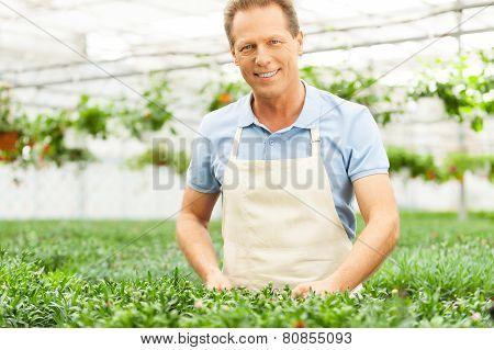 Man Gardening.