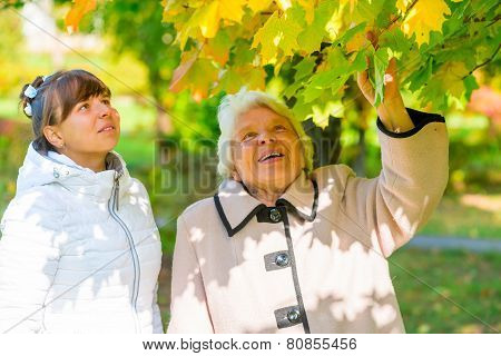 Walk Girl With Her Grandmother In The Park In Autumn