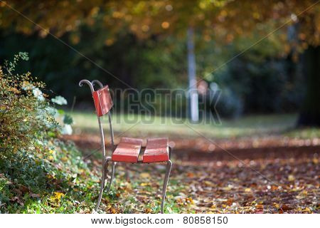 A Chair For A Rest In Late Autumn