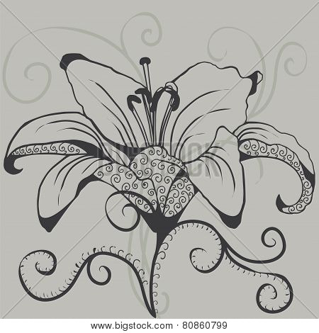 silhouette of gray lily.