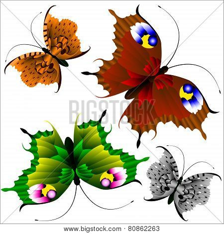 Set Of Beautiful Multi-colored Butterflies On A White Background.