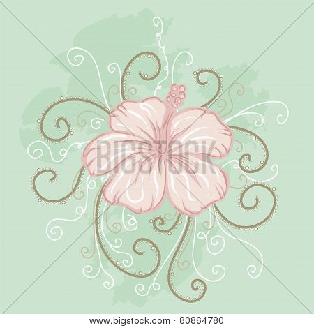 pink hibiscus on a light green background