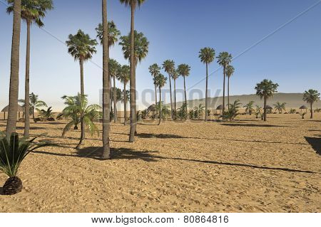 3D Rendering of Newly landscaped arid tropical park with a variety of palm trees in sandy soil under a hot summer sun