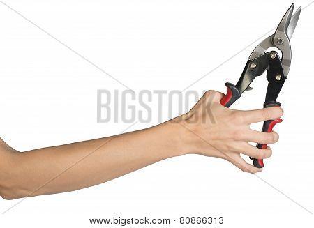 Female hand holding tin snips