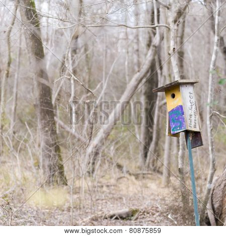 Yellow Bird House