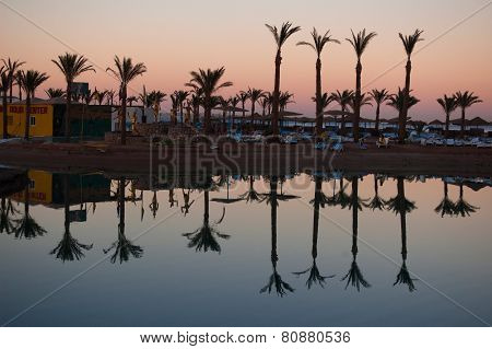 Palms are reflecting in the water on the warm sunset of the summer day in Egypt