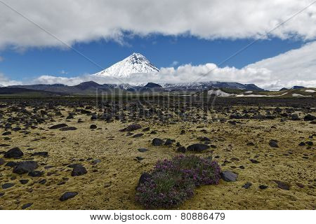 Beautiful volcanic landscape - view on Kamen Volcano and tundra. Russia, Far East, Kamchatka