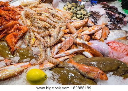 Fine seafood in the Boqueria