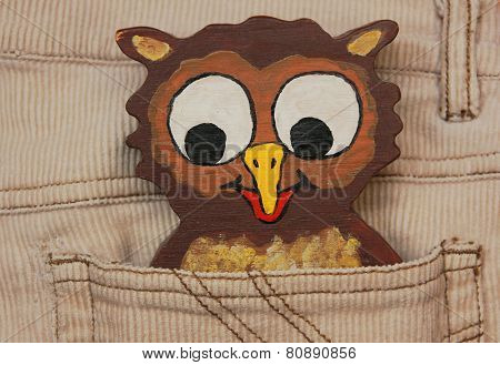 Little Owl In A Trousers Pocket