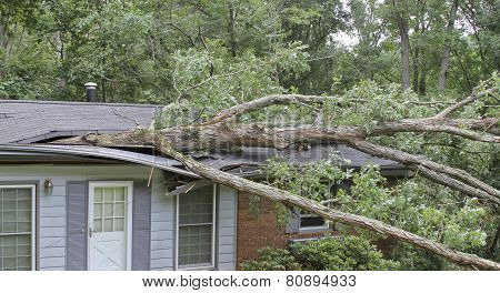 Tree Lands On House Roof Crushing It