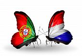 image of holland flag  - Two butterflies with flags on wings as symbol of relations Portugal and Holland - JPG
