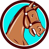 picture of bronco  - Illustration of a horse head with bridle viewed from the side set inside circle on isolated background done in cartoon style - JPG