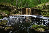 picture of suwannee river  - Waterfalls along Falling Creek in Northern Florida - JPG