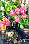 Постер, плакат: Easter Decoration With Colorful Spring Flowers Tulips Snowdrops And Narcissus