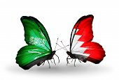 picture of bahrain  - Two butterflies with flags on wings as symbol of relations Saudi Arabia and Bahrain - JPG