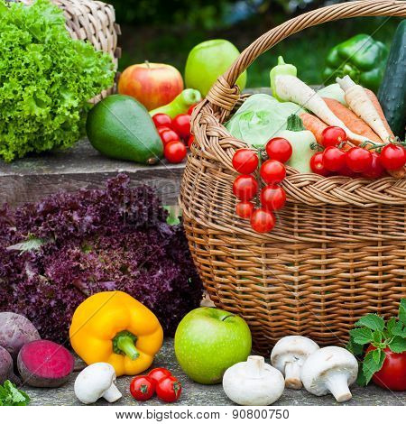 Composition of Various fresh vegetables