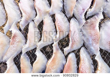 Dried Salted Fish Under The Sun