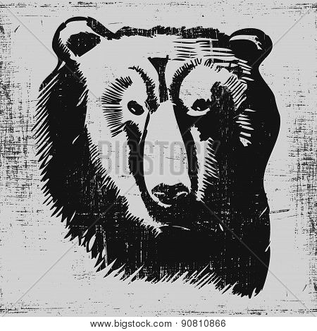bear head hand drawn sketch grunge texture engraving style