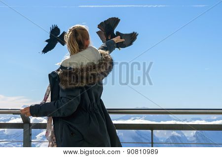 The Girl Feeds The Birds Out Of The Hands