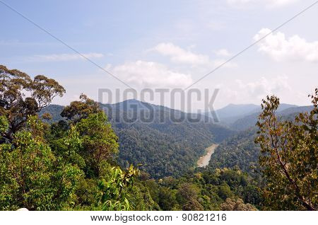 View of Pahang National Park