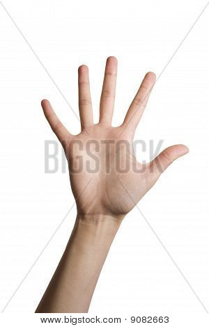 open hand over white background