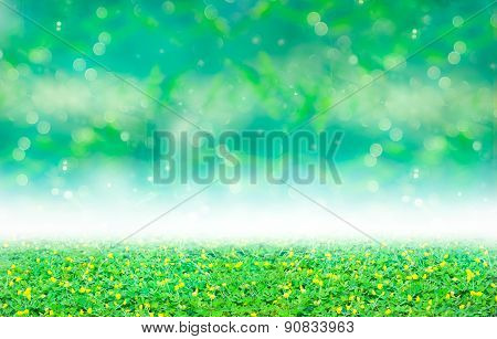 Green Clover And Yellow Blossom Under Blurred Bokeh Abstract From Bamboo Leaf Background