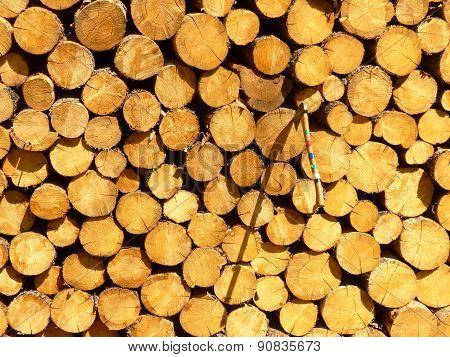 wood pole with axe