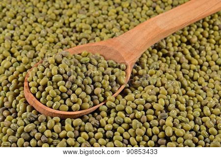 Green Mung Beans In A Spoon