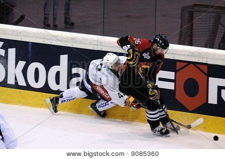 SC Bern vs. Jokerit Helsinki