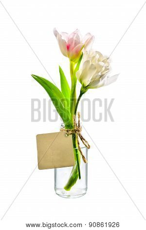 Pink And White Flower In Clear Bottle With Label On White Background