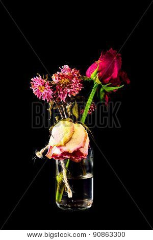 Wither Red And Pink Flowers In Clear Bottle On Black Background