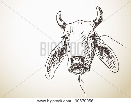 Sketch of the long ears of cattle Isolated Vector Illustration