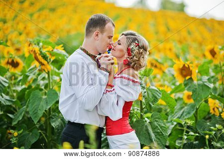 Wedding Beautiful Couple In Traditional Dress At The Sunflower