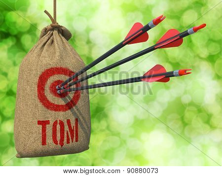 TQM - Arrows Hit in Red Target.