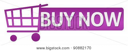 Buy Now Pink Purple Shopping Cart Button