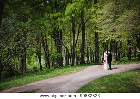 Wedding Couple At The Forest. Tilt-shift Effect
